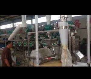 双辊石碾-自动上料制粉单机